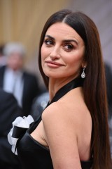 Penelope-Cruz---92nd-Annual-Academy-Awards-Vettri.Net-10.md.jpg